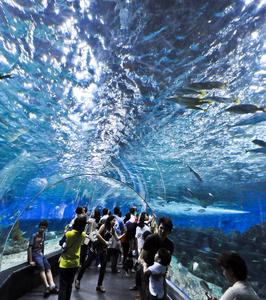 Interior Of The Manila Ocean Park