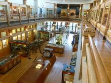Interior Redpath Museum