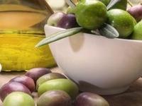 International Congress on the Mediterranean Diet