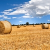 Irish Countryside Straw Bales