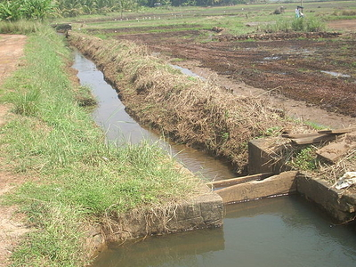 Irrigation At Paddy Land