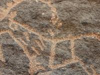 Bir Hima Rock Petroglyphs And Inscriptions