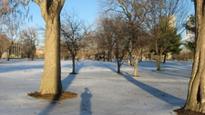 Indianapolis Military Park In The Snow