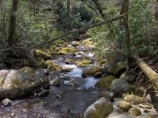 Indian Camp Creek