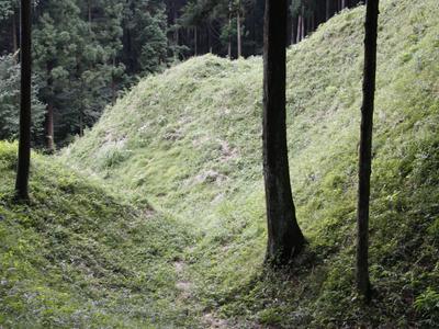 Iwabitsu Castle