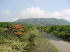 Mountain Mihara With Azaleas