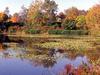 Jackson Lake - Ohio