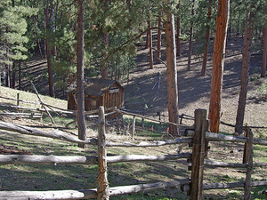 Jacob Lake Site Picnic