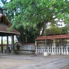 Janardanaswamy Temple