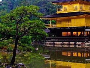 Japan Tours - 7 Nights 8 Days Fotos