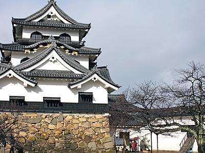 Japan Shiga Hikone Castle