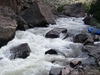 Jarbridge River Idaho
