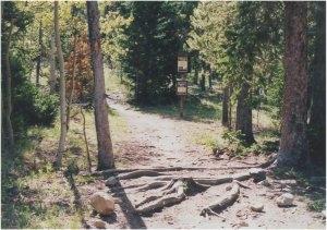Jefferson Creek Campground