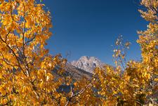 Jenny Lake Loop Trail At Fall - Grand Tetons - Wyoming - USA