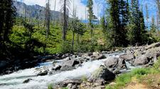 Jenny Lake Loop Trail - Grand Tetons - Wyoming - USA