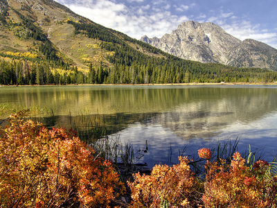 Jenny Lake Views At Grand Tetons - Wyoming - USA