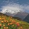 Jhinu Danda - Nepal