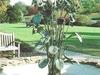 Jim  Gary Colts  Neck Memorial  Garden