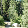 Joe's Creek Trail