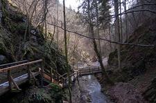 Johannesbachklamm, Würflach, Lower Austria