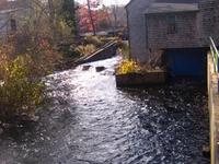 Jones río