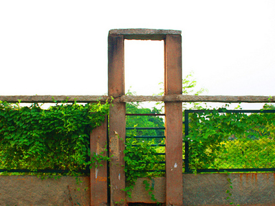 Jp Park Wall