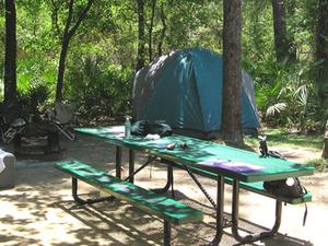 Juniper Springs Campground