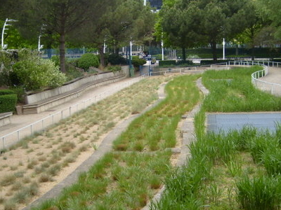 The Room Of Undulating Grasses