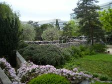 Room Of Mauve And Blue, Jardin Atlantique