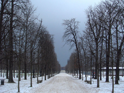 Jardin Des Tuileries In Winter