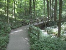 Jefferson Memorial Forest Tuliptree Trail