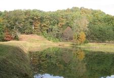 Jefferson Memorial Forest
