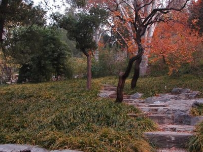 Inner View Of Jingshan Park