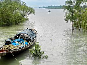 Get 25% Discount on Sundarban Tour