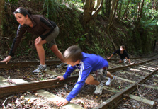 Kaimai Heritage Trail - North Island - New Zealand