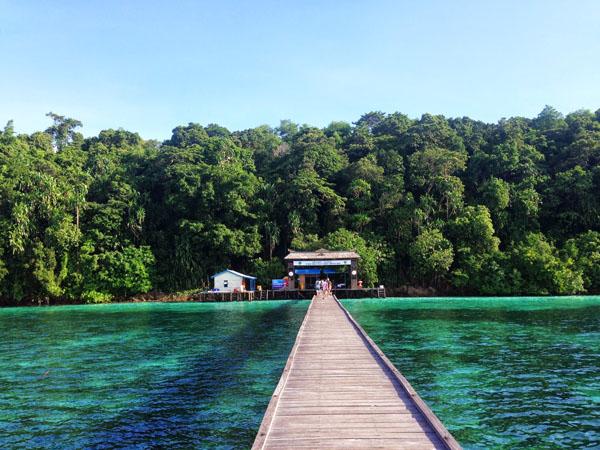 Exotic Derawan ,Kakaban, Sangalaki Trip Photos