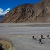 Kali Gandaki Gorge Landscape - Nepal Annapurna