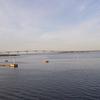 Kalmar Bridge