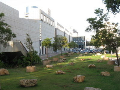 The Rocks Garden Adjacent To The Mall