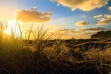 Karekare Beach Near Auckland - North Island NZ