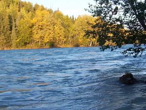 Kasilof Río
