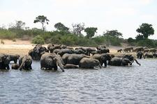 Kavango-Zambezi Transfrontier Conservation Area