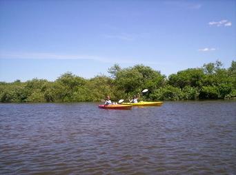 Kayakers On Kalamazoo River
