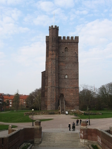 The Medieval Tower