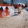 Kearney Dog Sled Race