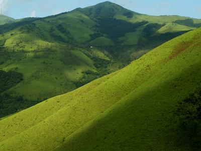 Kemmanagundi Shola Landscape