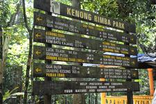 Kenong Rimba Park - Gua Trail