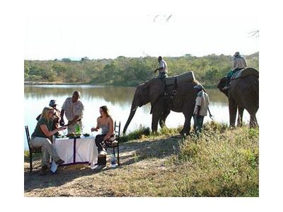 Kenya Budget Safaris-1