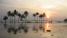 Kerala Backwaters Sunset