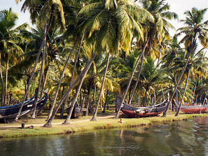 03 Nights & 04 Days Kerala Package Photos